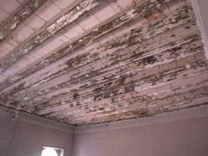 La necessità di un intervento di pulizia delle travi in legno antico 300x225 - La necessità di un intervento di pulizia delle travi in legno antico
